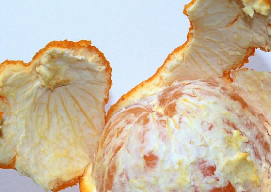 orange-peel-lifestylica