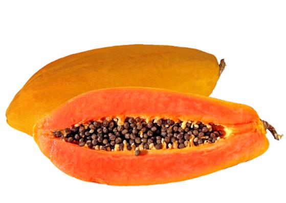papaya-lifestylica
