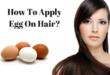 apply-egg-on-hair-lifestylica