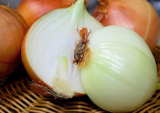 onion-lifestylica