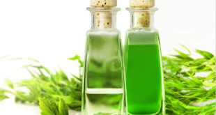 Tea tree oil for hair - Featured
