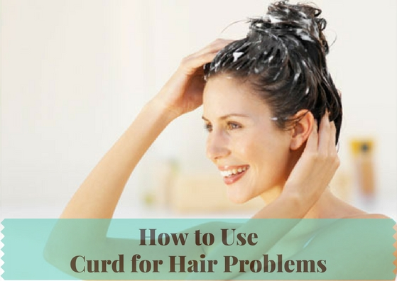 Curd for Hair Problems