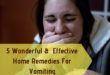home remedies for vomiting - lifestylica