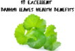 18-brahmi-leaves-health-benefits-lifestylica