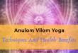 Anulom vilom - lifestylica